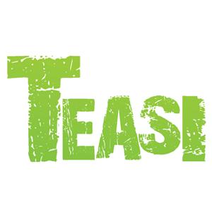 logo_teasi